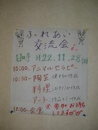 20101128_008